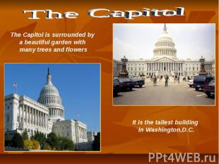 The Capitol The Capitol is surrounded by a beautiful garden with many trees and