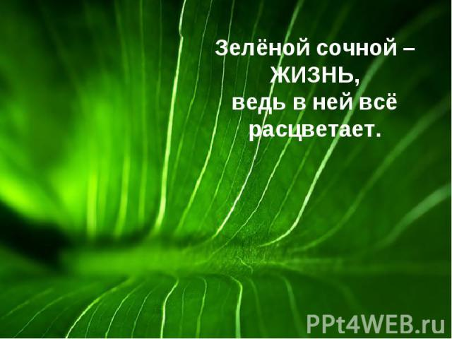 Зелёной сочной – ЖИЗНЬ, ведь в ней всё расцветает.