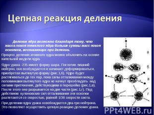 Цепная реакция деления Деление ядра возможно благодаря тому, что масса покоя тяж