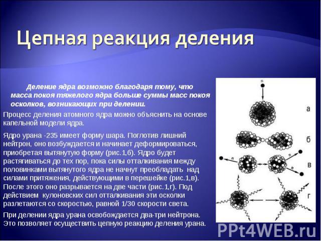Цепная реакция деления Деление ядра возможно благодаря тому, что масса покоя тяжелого ядра больше суммы масс покоя осколков, возникающих при делении. Процесс деления атомного ядра можно объяснить на основе капельной модели ядра. Ядро урана -235 имее…