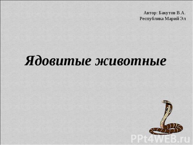 Автор: Бакутов В.А. Республика Марий Эл Ядовитые животные