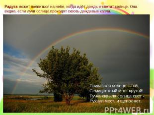 Радуга может появиться на небе, когда идёт дождь и светит солнце. Она видна, есл