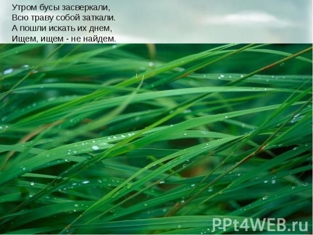 Утром бусы засверкали, Всю траву собой заткали. А пошли искать их днем, Ищем, ищем - не найдем.