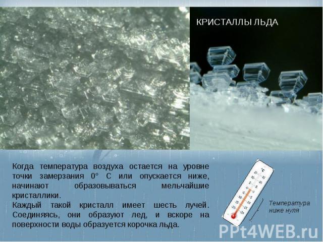 КРИСТАЛЛЫ ЛЬДА Когда температура воздуха остается на уровне точки замерзания 0° С или опускается ниже, начинают образовываться мельчайшие кристаллики. Каждый такой кристалл имеет шесть лучей. Соединяясь, они образуют лед, и вскоре на поверхности вод…