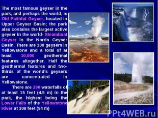 The most famous geyser in the park, and perhaps the world, is Old Faithful Geyse