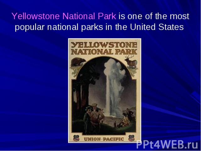Yellowstone National Park is one of the most popular national parks in the United States
