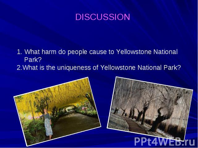 DISCUSSION What harm do people cause to Yellowstone National Park? 2.What is the uniqueness of Yellowstone National Park?