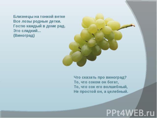 Близнецы на тонкой ветке Все лозы родные детки. Гостю каждый в доме рад. Это сладкий... (Виноград) Что сказать про виноград? То, что соком он богат, То, что сок его волшебный, Не простой он, а целебный.