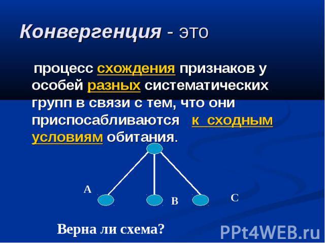 Конвергенция - это процесс схождения признаков у особей разных систематических групп в связи с тем, что они приспосабливаются к сходным условиям обитания. Верна ли схема?