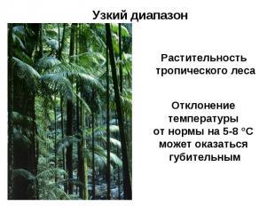 Узкий диапазон Растительность тропического леса Отклонение температуры от нормы