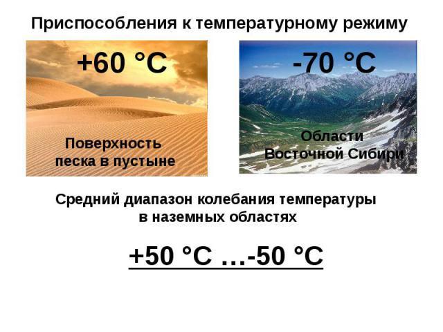 Приспособления к температурному режиму Средний диапазон колебания температуры в наземных областях