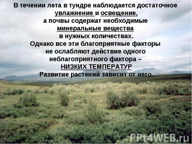 В течении лета в тундре наблюдается достаточное увлажнение и освещение, а почвы содержат необходимые минеральные вещества в нужных количествах. Однако все эти благоприятные факторы не ослабляют действие одного неблагоприятного фактора – НИЗКИХ ТЕМПЕ…