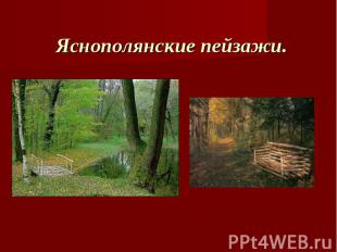 Яснополянские пейзажи.
