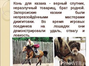 Конь для казака - верный спутник, неразлучный товарищ, брат родной. Запорожские