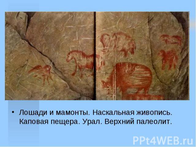 Лошади и мамонты. Наскальная живопись. Каповая пещера. Урал. Верхний палеолит.