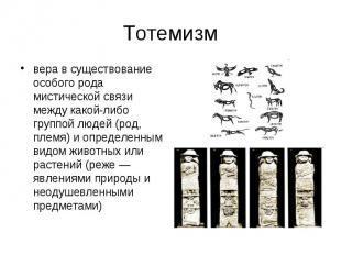 Тотемизм вера в существование особого рода мистической связи между какой-либо гр