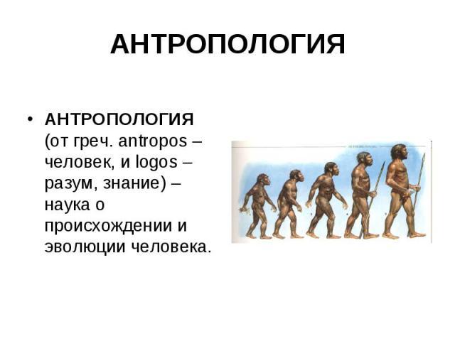 АНТРОПОЛОГИЯ АНТРОПОЛОГИЯ (от греч. antropos – человек, и logos – разум, знание) – наука о происхождении и эволюции человека.