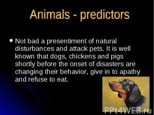 Animals - predictors Not bad a presentiment of natural disturbances and attack p