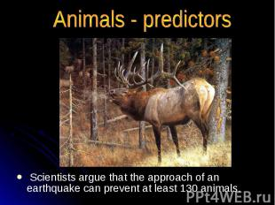 Animals - predictors Scientists argue that the approach of an earthquake can pre