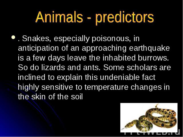 Animals - predictors . Snakes, especially poisonous, in anticipation of an approaching earthquake is a few days leave the inhabited burrows. So do lizards and ants. Some scholars are inclined to explain this undeniable fact highly sensitive to tempe…