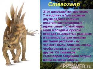 Стегозавр Этот динозавр мог достигать 7.м в длину и был украшен двумя рядами кос