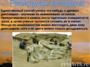 Реконструкция динозавров Единственный способ узнать что-нибудь о древних динозав
