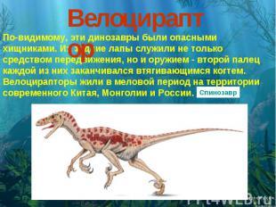 Велоцираптор По-видимому, эти динозавры были опасными хищниками. Их задние лапы