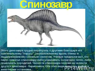 Спинозавр Этого динозавра трудно перепутать с другими благодаря его оригинальном