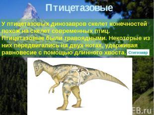 Птицетазовые У птицетазовых динозавров скелет конечностей похож на скелет соврем
