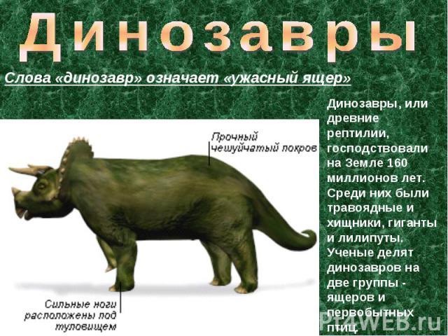 Динозавры Слова «динозавр» означает «ужасный ящер» Динозавры, или древние рептилии, господствовали на Земле 160 миллионов лет. Среди них были травоядные и хищники, гиганты и лилипуты. Ученые делят динозавров на две группы - ящеров и первобытных птиц.