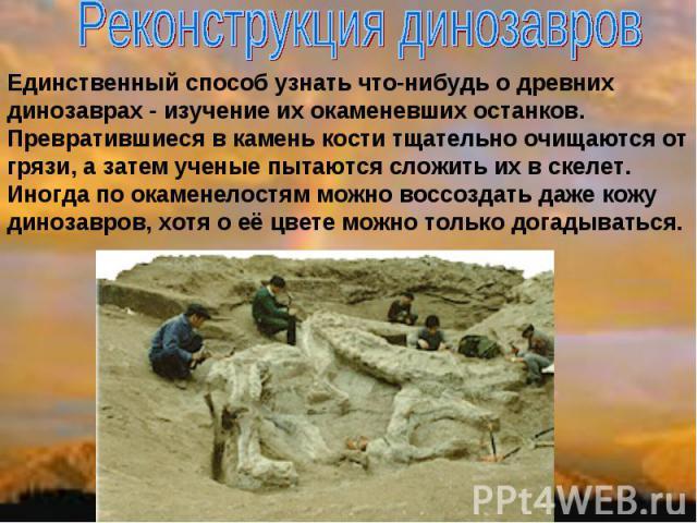 Реконструкция динозавров Единственный способ узнать что-нибудь о древних динозаврах - изучение их окаменевших останков. Превратившиеся в камень кости тщательно очищаются от грязи, а затем ученые пытаются сложить их в скелет. Иногда по окаменелостям …