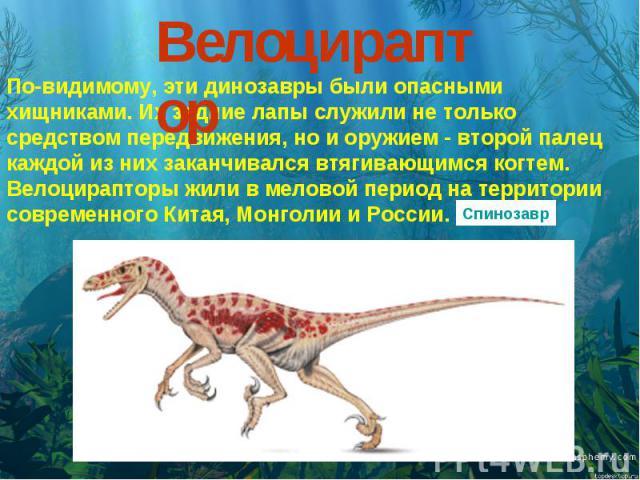Велоцираптор По-видимому, эти динозавры были опасными хищниками. Их задние лапы служили не только средством передвижения, но и оружием - второй палец каждой из них заканчивался втягивающимся когтем. Велоцирапторы жили в меловой период на территории …