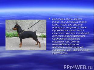 Вся семья очень любит собак: был любимый барбос Кадо. После его смерти подобрали