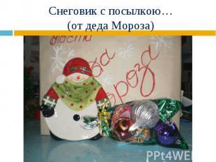 Снеговик с посылкою… (от деда Мороза)