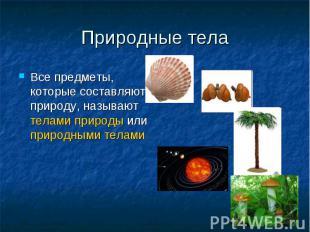 Природные тела Все предметы, которые составляют природу, называют телами природы