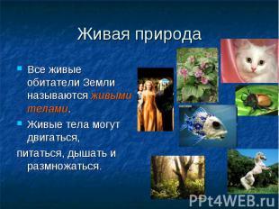 Живая природа Все живые обитатели Земли называются живыми телами. Живые тела мог