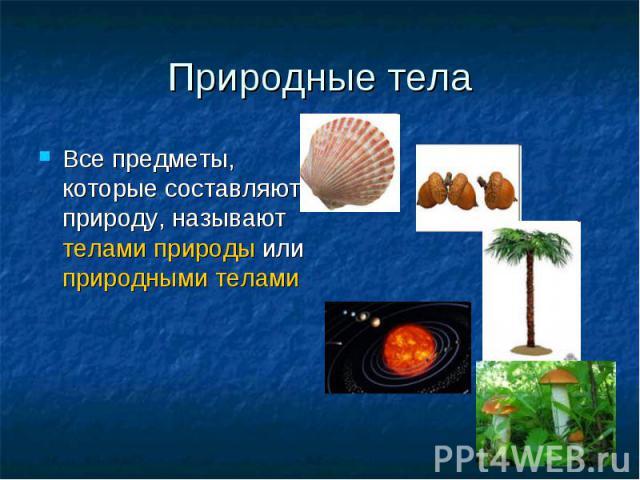 Природные тела Все предметы, которые составляют природу, называют телами природы или природными телами