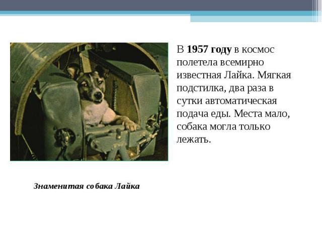 В 1957 году в космос полетела всемирно известная Лайка. Мягкая подстилка, два раза в сутки автоматическая подача еды. Места мало, собака могла только лежать. Знаменитая собака Лайка