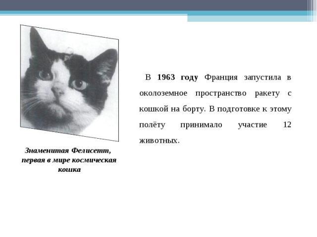 В 1963 году Франция запустила в околоземное пространство ракету с кошкой на борту. В подготовке к этому полёту принимало участие 12 животных. Знаменитая Фелисетт, первая в мире космическая кошка