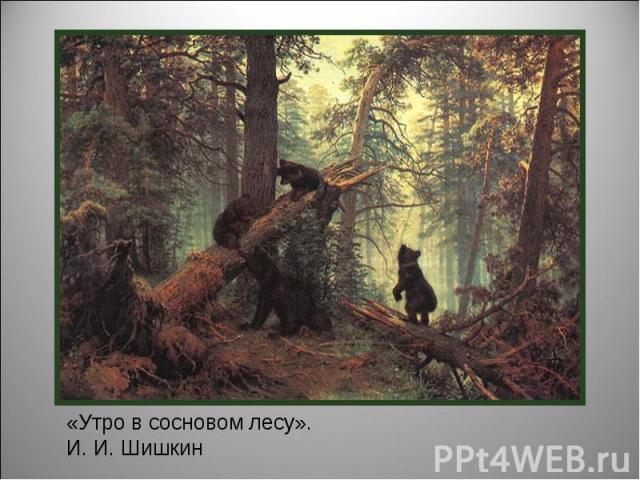 «Утро в сосновом лесу». И. И. Шишкин