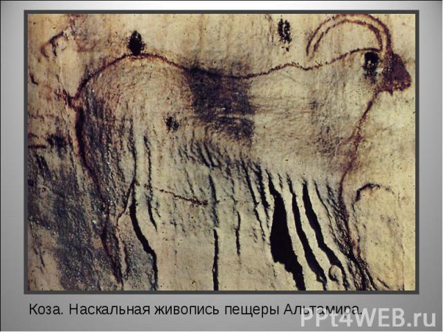 Коза. Наскальная живопись пещеры Альтамира.