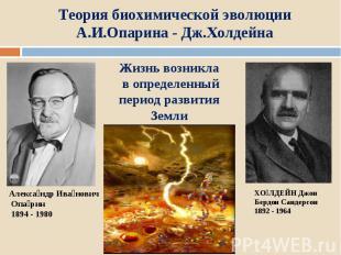 Теория биохимической эволюции А.И.Опарина - Дж.Холдейна Жизнь возникла в определ