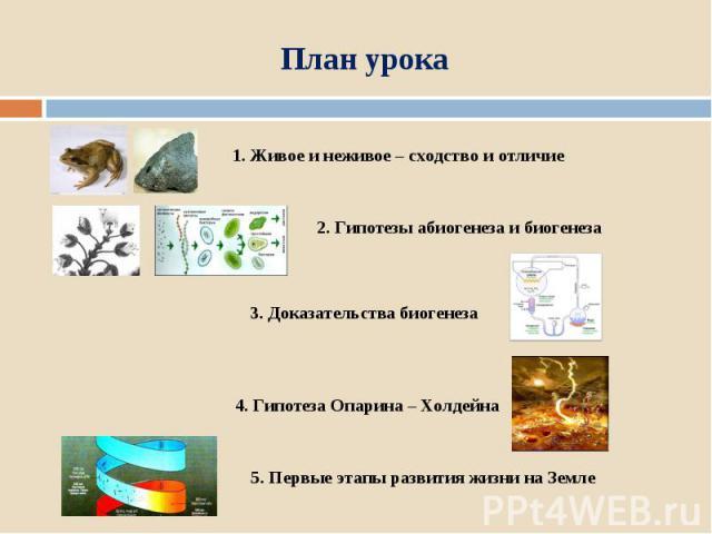 План урока 1. Живое и неживое – сходство и отличие 2. Гипотезы абиогенеза и биогенеза 3. Доказательства биогенеза 4. Гипотеза Опарина – Холдейна 5. Первые этапы развития жизни на Земле