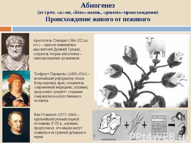 Абиогенез (от греч. «a»-не, «bios»-жизнь, «genesis»-происхождение) Происхождение живого от нежив ого Аристотель Стагирит (384–322 до н.э.) – один из знаменитых мыслителей Древней Греции, создатель теории абиогенеза – самозарождения организмов Теофра…