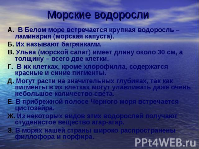 Морские водоросли А. В Белом море встречается крупная водоросль – ламинария (морская капуста). Б. Их называют багрянками. В. Ульва (морской салат) имеет длину около 30 см, а толщину – всего две клетки. Г. В их клетках, кроме хлорофилла, содержатся к…