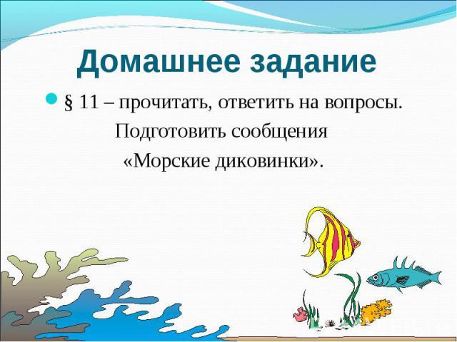 Домашнее задание § 11 – прочитать, ответить на вопросы. Подготовить сообщения «Морские диковинки».