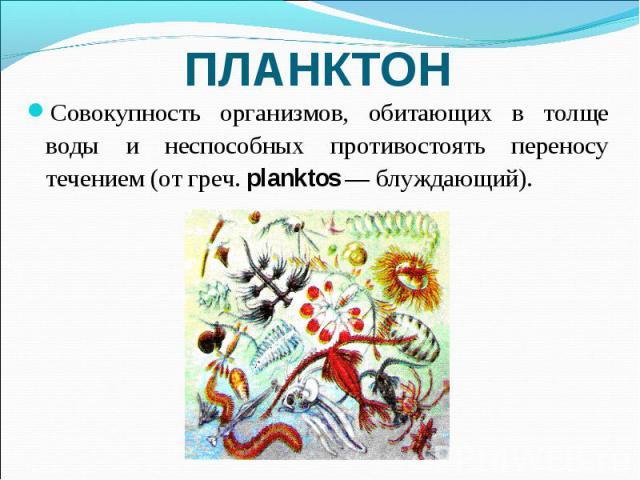 ПЛАНКТОН Совокупность организмов, обитающих в толще воды и неспособных противостоять переносу течением (от греч. planktos — блуждающий).
