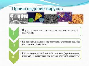 Происхождение вирусов Вирус – это сильно генерированная клетка или её фрагмент.