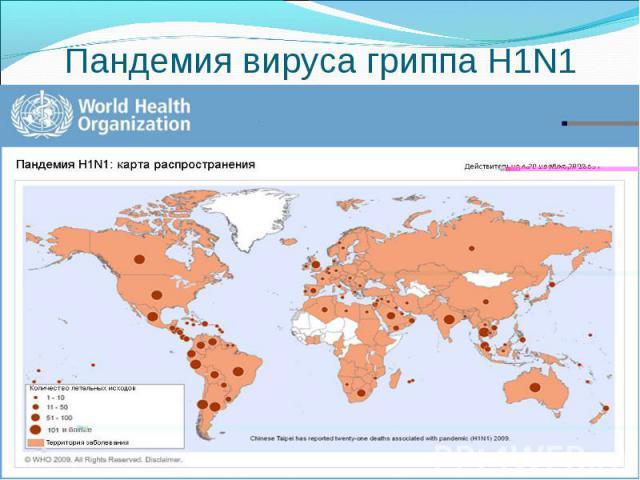 Пандемия вируса гриппа Н1N1