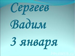 Сергеев Вадим 3 января
